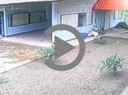 XAZOS-KLEFTIS-VIDEO