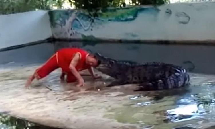Φύλακας έβαλε το κεφάλι του στο στόμα του κροκόδειλου και… το «πλήρωσε» (video)