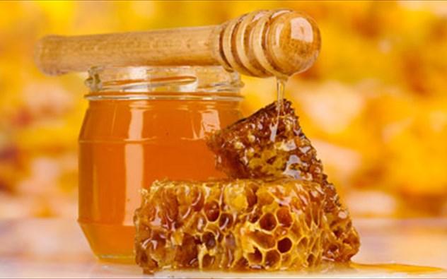 Σήμερα το 1ο Φεστιβάλ Μελιού και Μελισσοκομίας