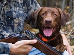κυνηγός-με-σκύλο