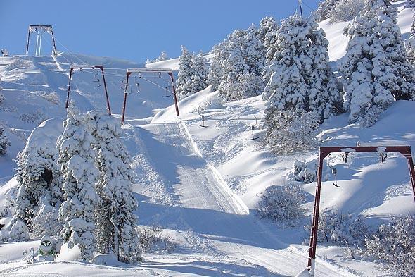 Χιονοδρομία στην Κύπρο