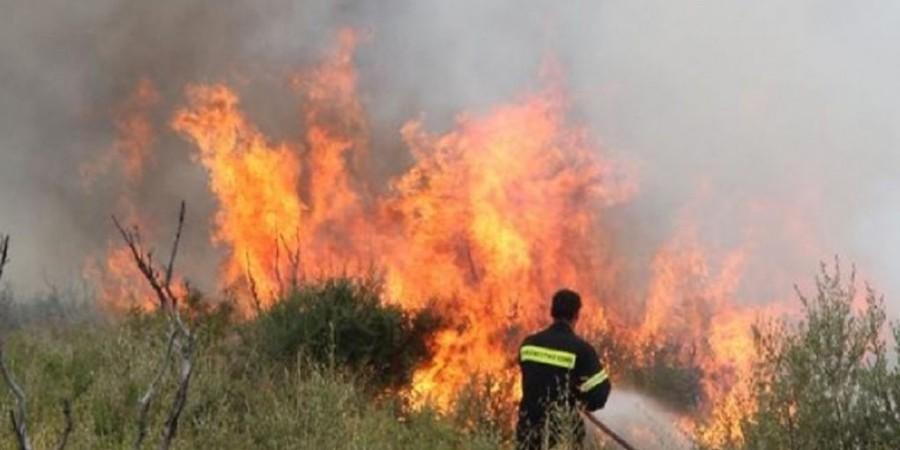 Αυστηροποιούνται οι ποινές για πρόκληση πυρκαγιάς