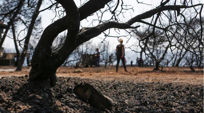 Ο τελευταίος νεκρός στο οικόπεδο της φρίκης – Περίμενε κουλουριασμένος τον θάνατο