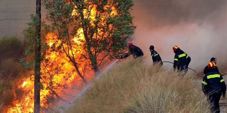 Συνελήφθη ο εμπρηστής της Ηλείας – Υπεύθυνος για τρεις πυρκαγιές