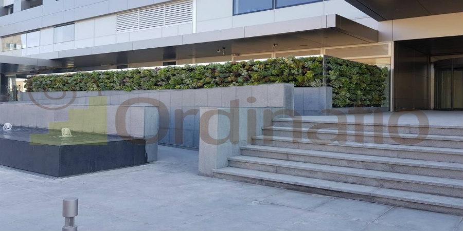 Η ORDINATIO πρωτοπορεί και μετατρέπει τους κοινούς τοίχους σε κήπο