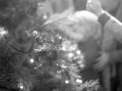 36c32ce2-732f-4872-8fb9-5e48abaa2d93_family-and-christmas-tree-general-1160×772.jpg