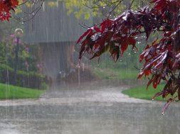 d68b2a98-c71a-4ef9-8cbc-2dc2adc754d1_βροχες-καταιγιδες