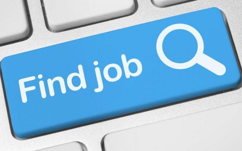 jobs-800x500_c