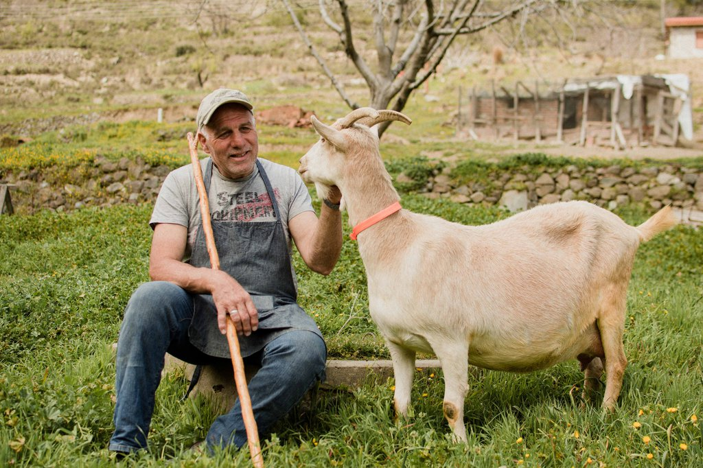 Ο Βαγγέλης ζει με τα ζώα του, στο μικρό σπίτι στα Λειβάδια