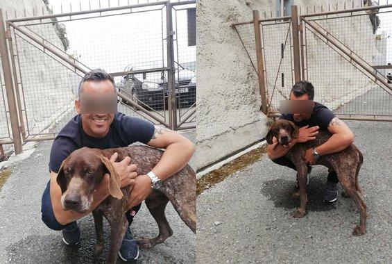 Ο σκύλος που κακοποιήθηκε στο φράγμα του Κούρη βρίσκεται πλέον σε καλά χέρια