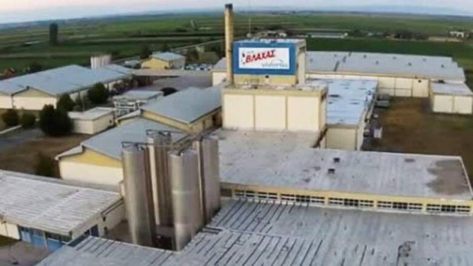 Λουκέτο: Τέλος εποχής για το Γάλα Βλάχας