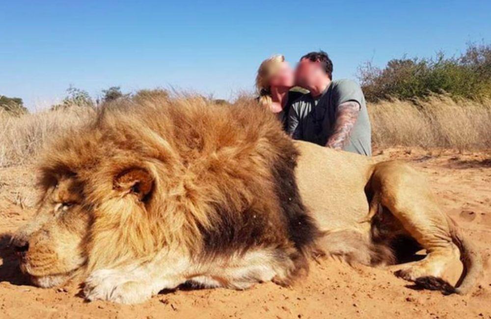 Σάλος για το ζευγάρι των κυνηγών που φιλήθηκε πάνω από νεκρό λιοντάρι