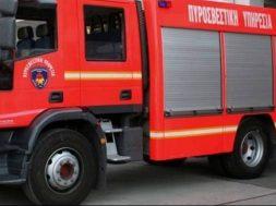 pyrosvestiki_kyprou-770x439_c