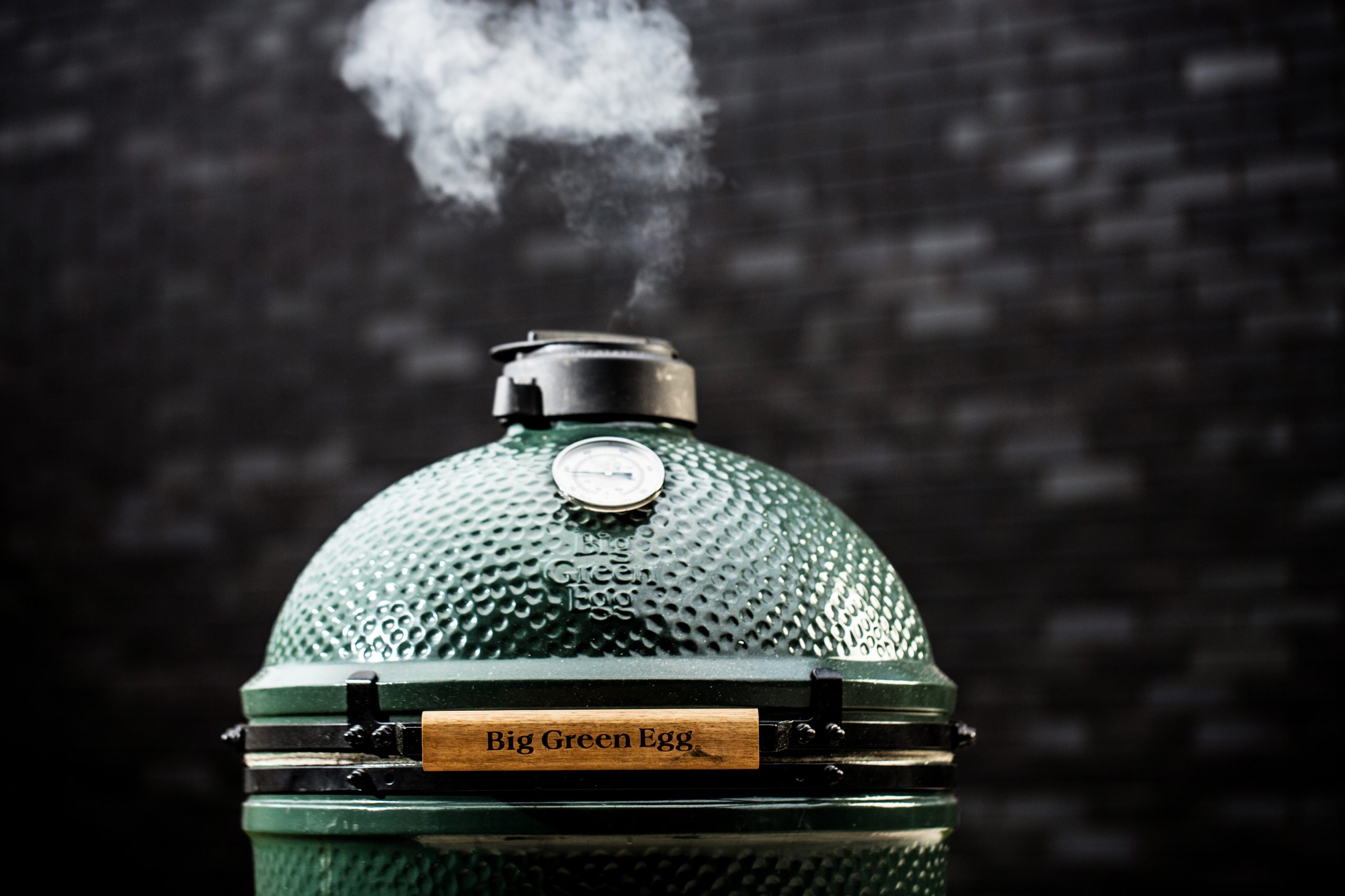 BigGreenEgg item (1)