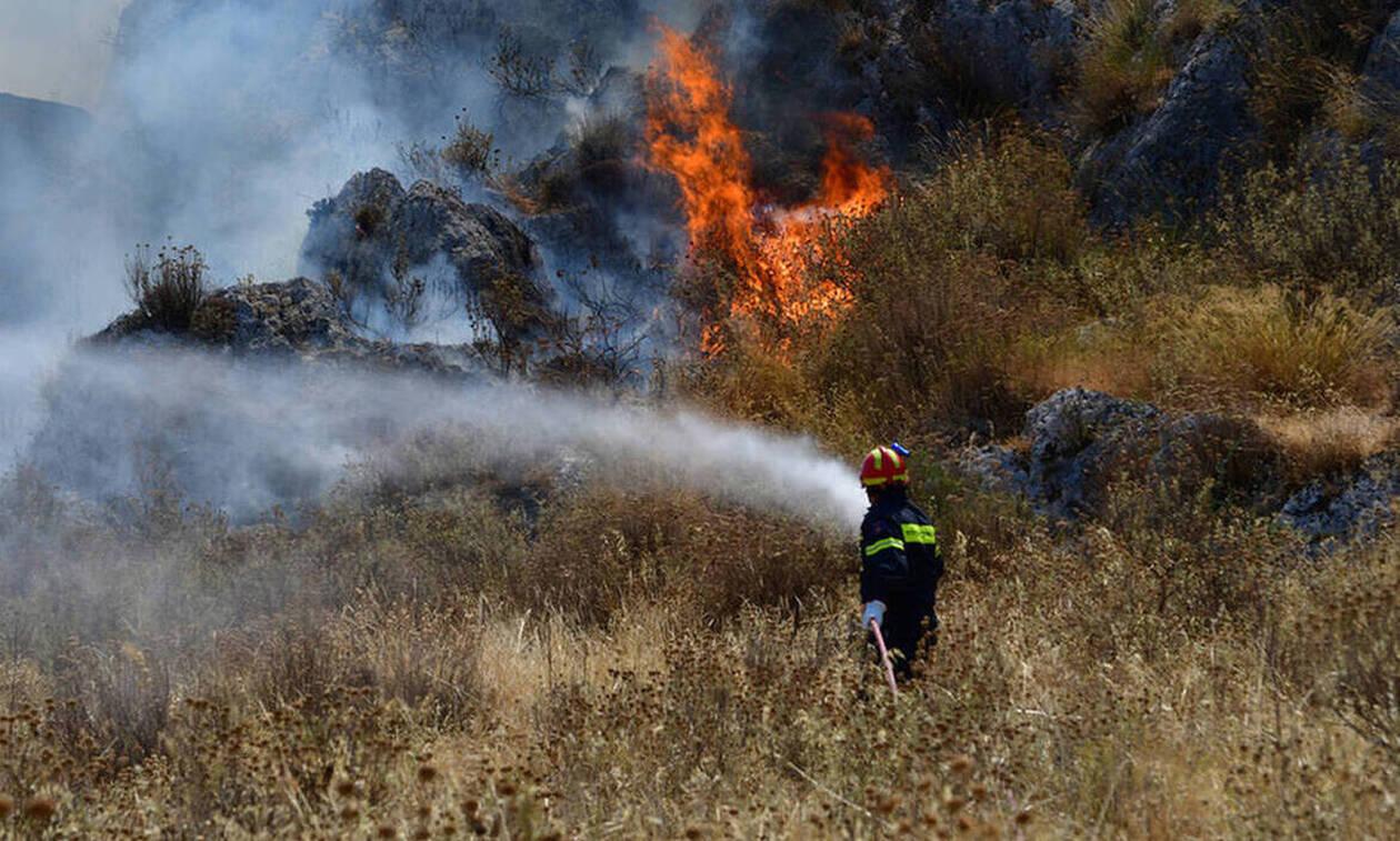 Σε επίπεδο «Κόκκινου Συναγερμού» παραμένει ο κίνδυνος πρόκλησης δασικών πυρκαγιών