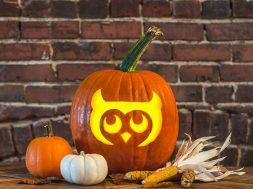 Owl_Pumpkin
