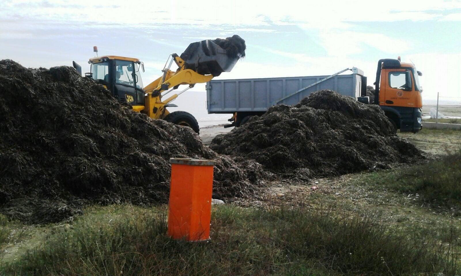 Δήμος Λάρνακας: Συνεχίζεται ο καθαρισμός Λεωφόρων και παραλιών