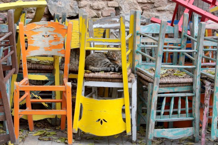 ΟΣΙΚΑ: Το 50% των κέντρων αναψυχής κινδυνεύουν να μην επαναλειτουργήσουν