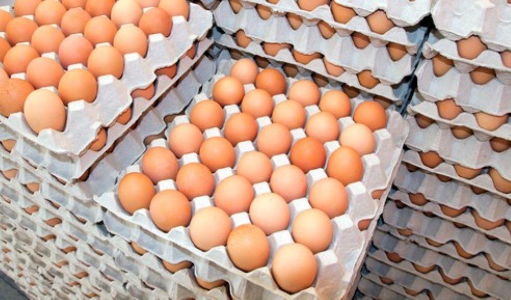 Σημαντική ετήσια μείωση στην παραγωγή αυγών το α΄ τετράμηνο 2021