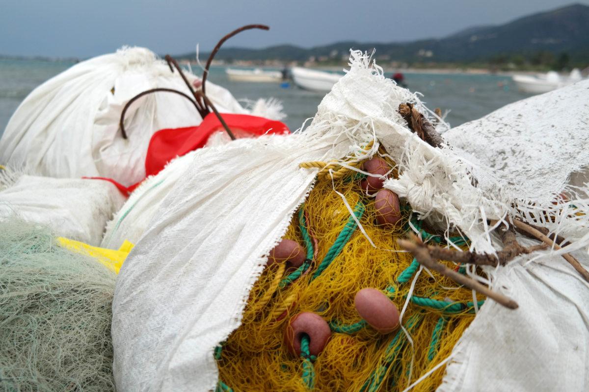 Η παράνομη αλιεία τορπιλίζει τον καταδυτικό τουρισμό της Λάρνακας (φώτο)