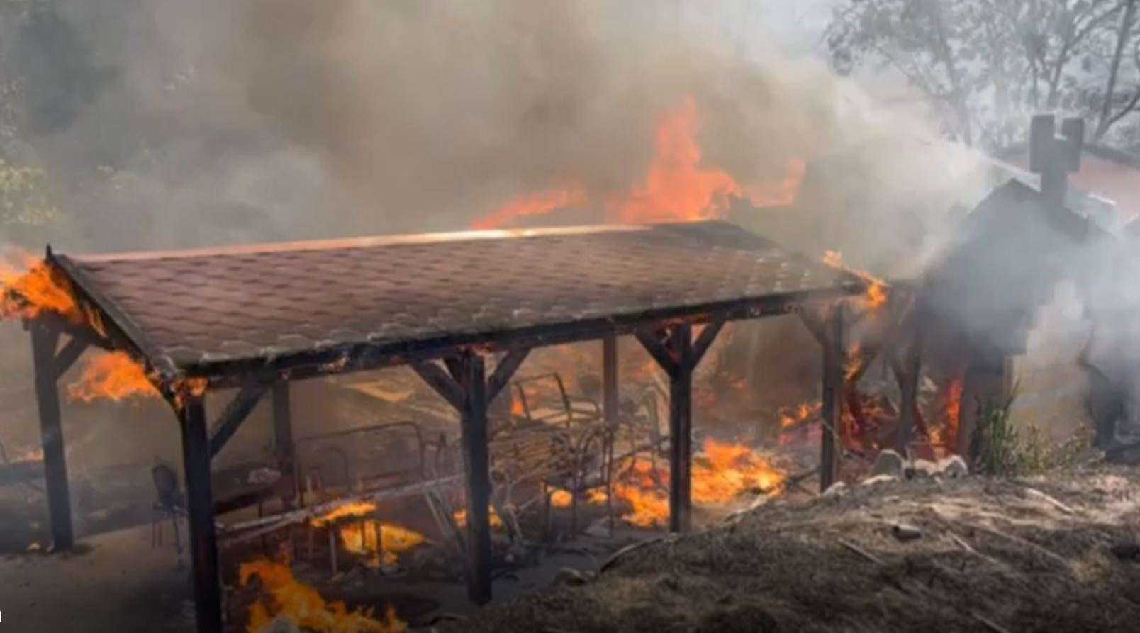 Επιστημονική Ομάδα του Πανεπιστημίου Αθηνών επισκέπτεται τις πυρόπληκτες περιοχές σε ορεινή Λάρνακα και Λεμεσό