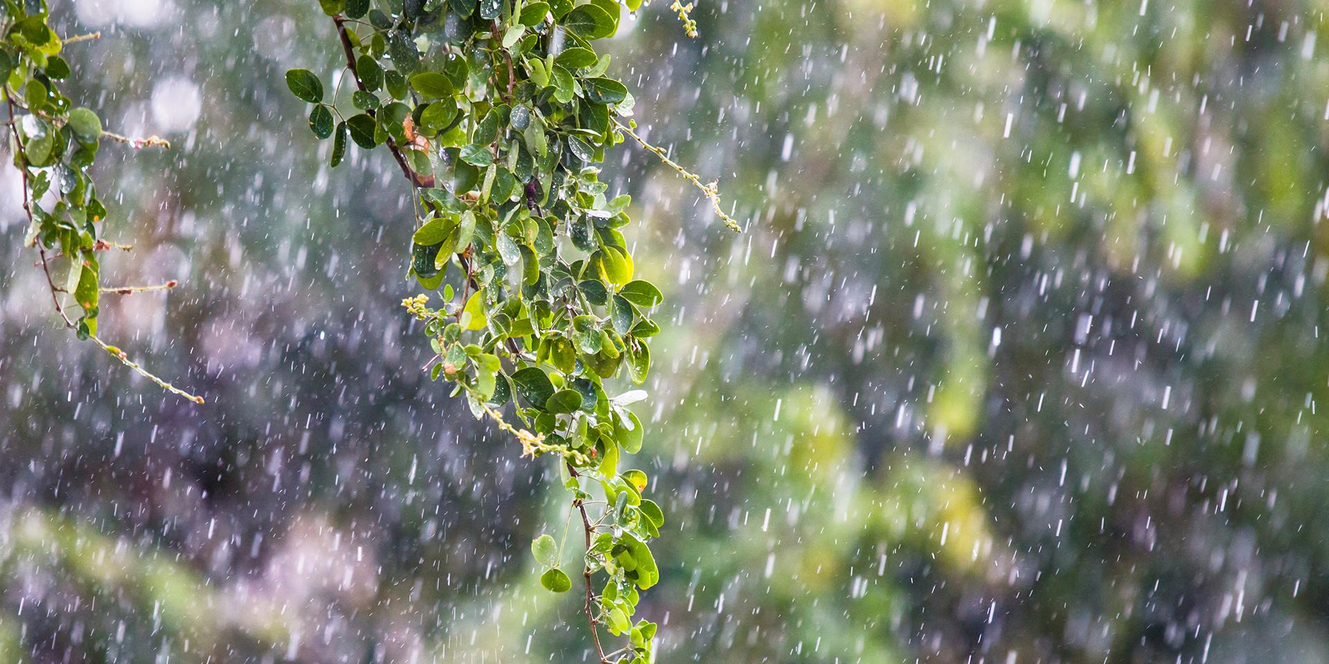 Αλλάζει το σκηνικό του καιρού – Έρχονται βροχές και καταιγίδες από το μεσημέρι