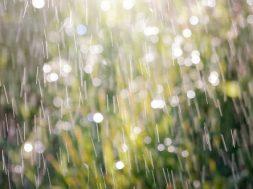 rain_summer_1