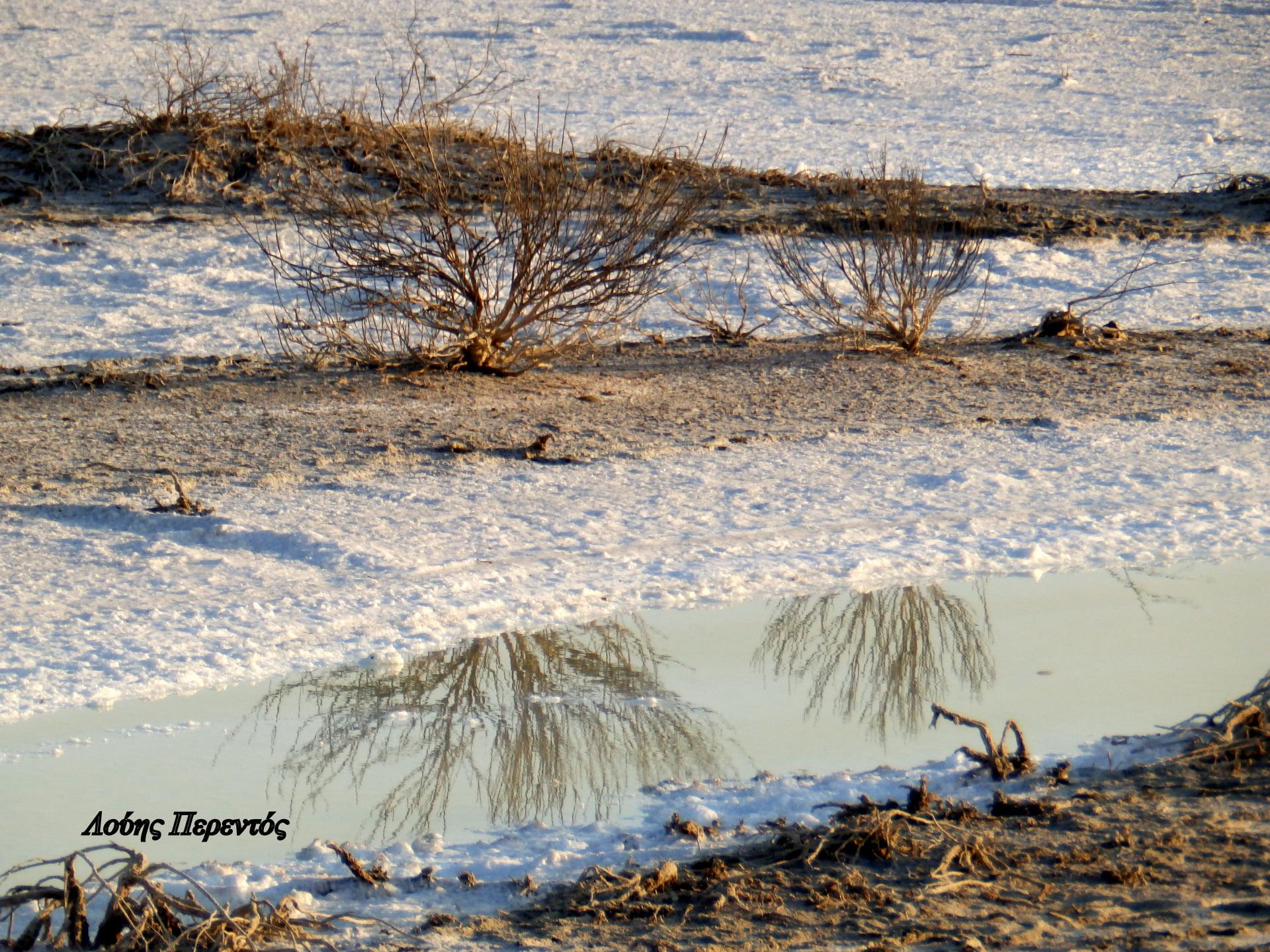 Η Αλυκή Λάρνακας σήμερα – ένα πανέμορφο χιονισμένο τοπίο !!!  (φώτο)