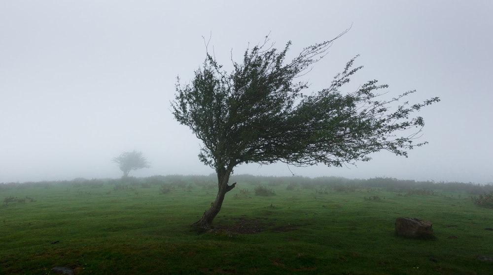 Χαλάει ο καιρός μετά το μεσημέρι: Αναμένονται βροχές και δυνατοί άνεμοι